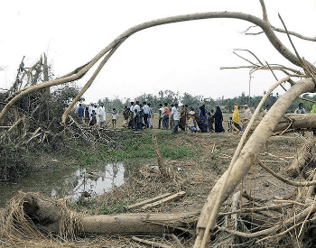 Picture 2 of 6 - Damage from the Daulapur-Saturia Tornado.