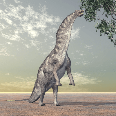 A Picture of a Amargasaurus