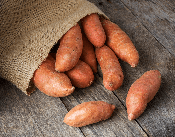 A picture of a bag full of sweet potatoes