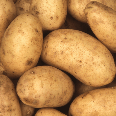 A Picture of Potatoes