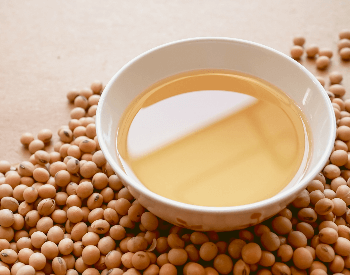A close-up picture of soybeans and oil