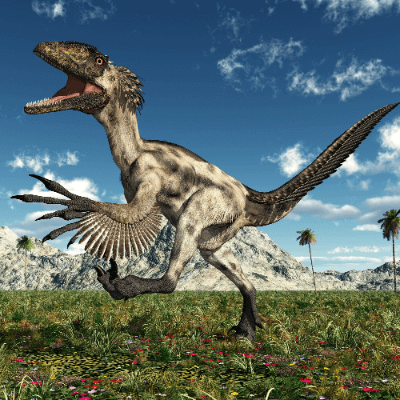 A Picture of a Deinonychus