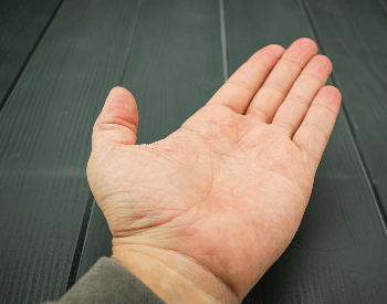 A picture of a human left hand