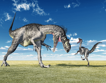 A picture of a Megalosaurus and a Velociraptor