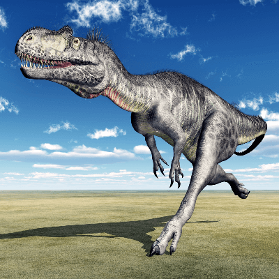 A Picture of a Megalosaurus