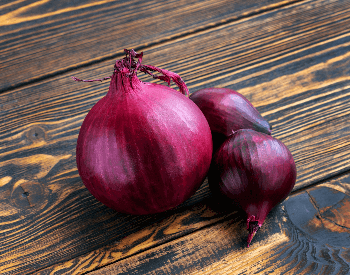 A picture of a purple onion