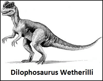 A sketch of what a Dilophosaurus might have looked like.