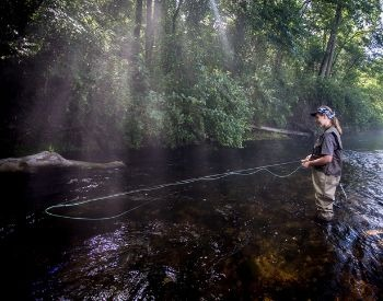 A picture of a woman fly fishing in a river