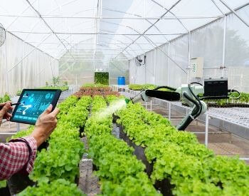 A picture of an automated greenhouse
