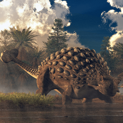 A Picture of Ankylosaurus Magniventris