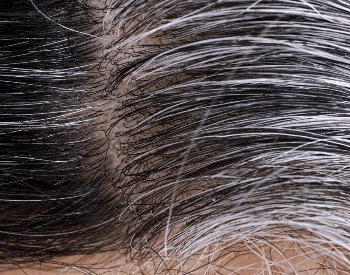 A close-up picture of human hair that's black and gray
