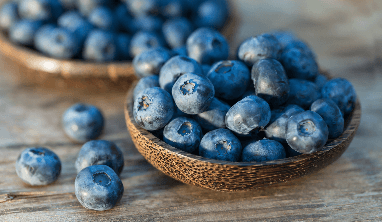 Blueberry Facts for Kids