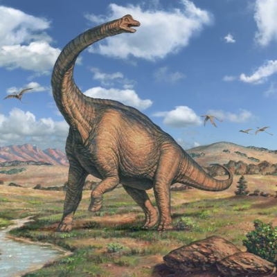 A Picture of Brachiosaurus altithorax