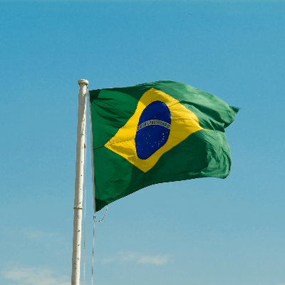 A Picture of the Brazil Flag