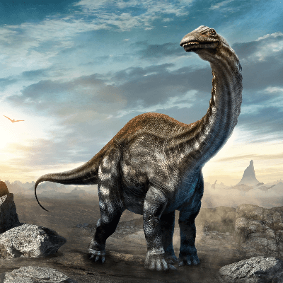 A Picture of Brontosaurus Excelsus