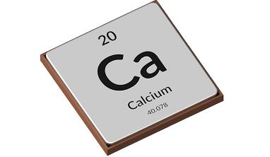 Calcium Facts for Kids