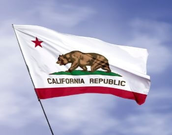 A picture of the U.S. state flag of California