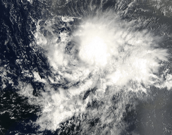2000 Hurricane Joyce - Category 1