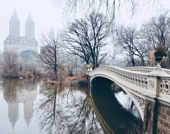 A picture of Central Park during the winter