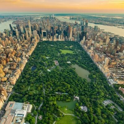 A Picture of Central Park