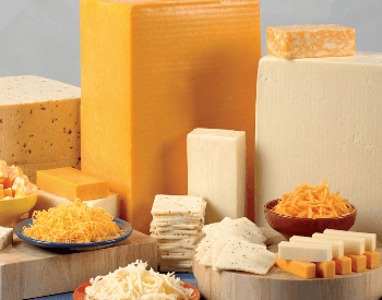 A picture of cheese, a food with a good source of protein