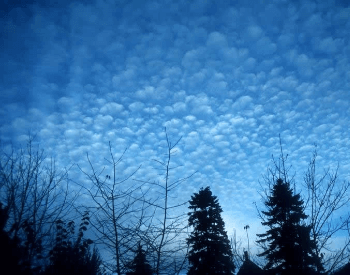 A picture of cirrocumulus clouds