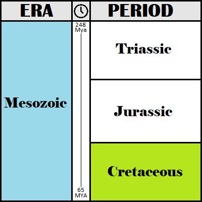 The Cretaceous Period Timeline