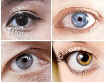 A picture of four different colors of the human eye
