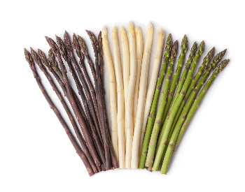 A picture of the different types of asparagus