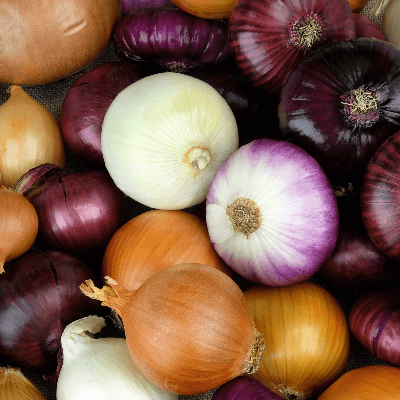 A Picture of Different Types of Onions