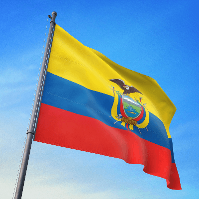 A Picture of the Flag of Ecuador
