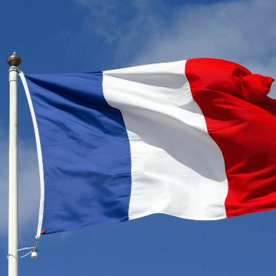 A Picture of the French Flag