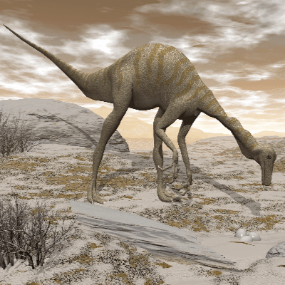 A Picture of Gallimimus Bullatus