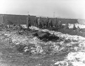 A picture of German soliders digging graves near Bastonge, Belgium