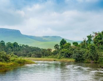 A picture of the view going down the Congo River