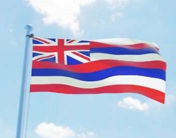 A picture of flag of the U.S. state of Hawaii