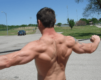 A picture of the upper back and arm muscles of a human