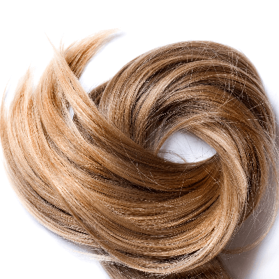 A Picture of Human Hair