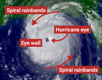 The Structure of a Hurricane