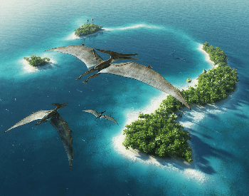 An illustration of three pteranodons flying over an island