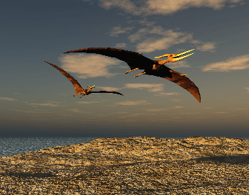An illustration of two pteranodons flying over the coast