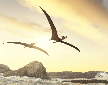 An illustration of two pteranodons flying over the ocean