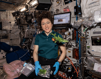 A picture of the Columbus laboratory on the ISS Space Station