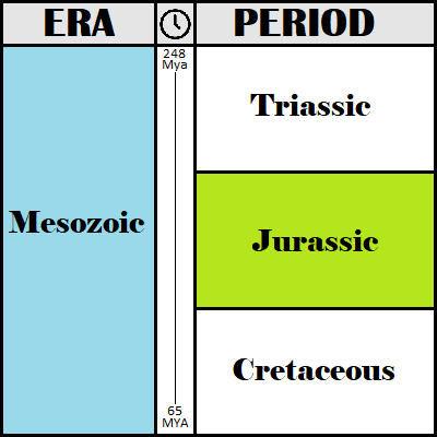 The Jurassic Period Timeline