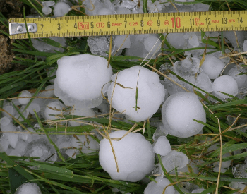 Large hail next to a tape measure