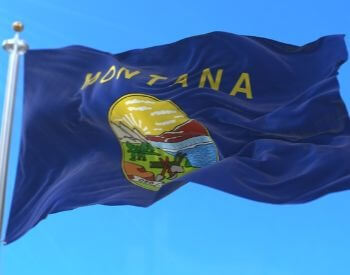 A picture of the flag of the U.S. state of Montana
