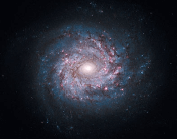 A photo of spiral galaxy NGC 3982