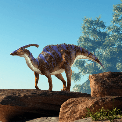 A Picture of Parasaurolophus Walkeri