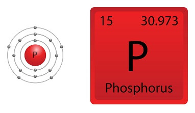 Phosphorus Facts for Kids
