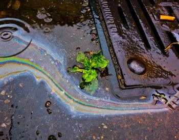 A picture of polluted water going into a storm drain